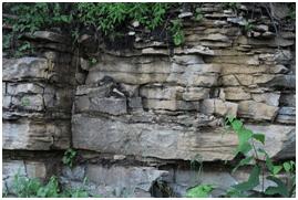 Sedimentary, Igneous, and Metamorphic Rocks – Grade 7 Science Worksheets