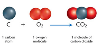 Grade 7th Science worksheets elements and compounds